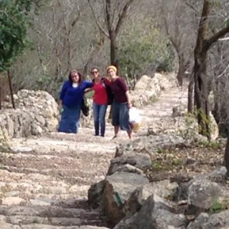 Trip to Sataf November 2015
